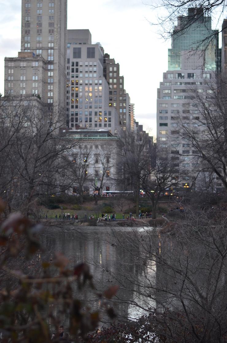 Central Park New York 10
