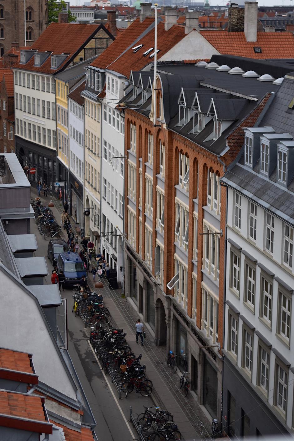 Acernoontea Copenhagen Acer DSC_0048