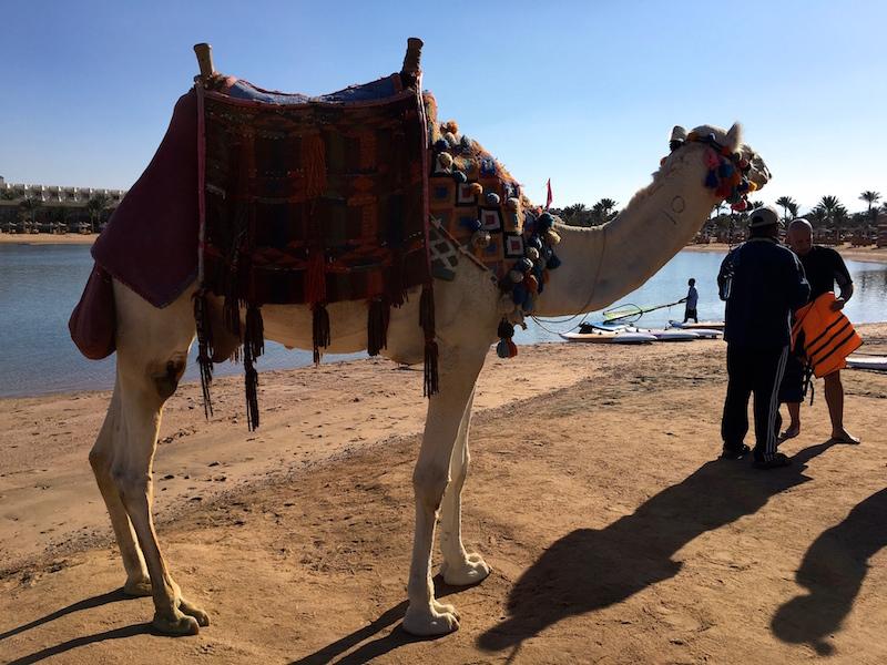 Hurghada Egypti IMG_0010