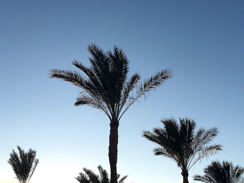 Hurghada Egypti IMG_0018