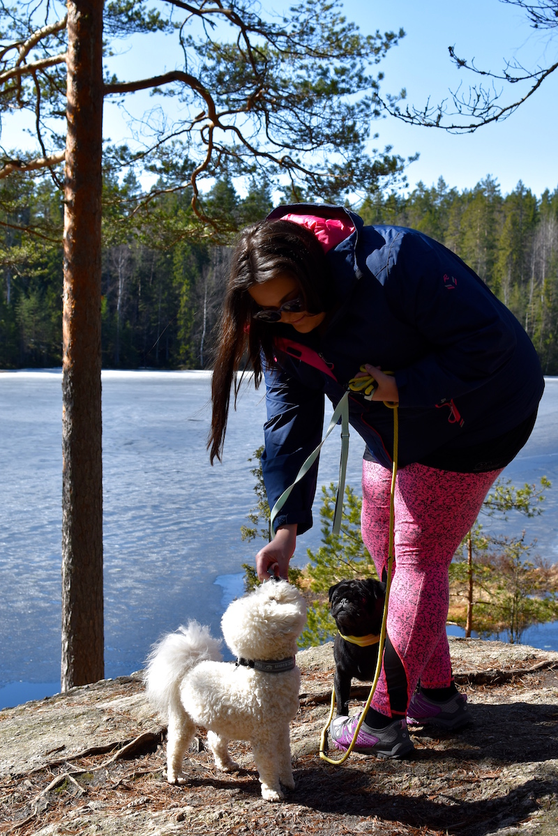 Nuuksiossa koiran kanssa DSC_0621
