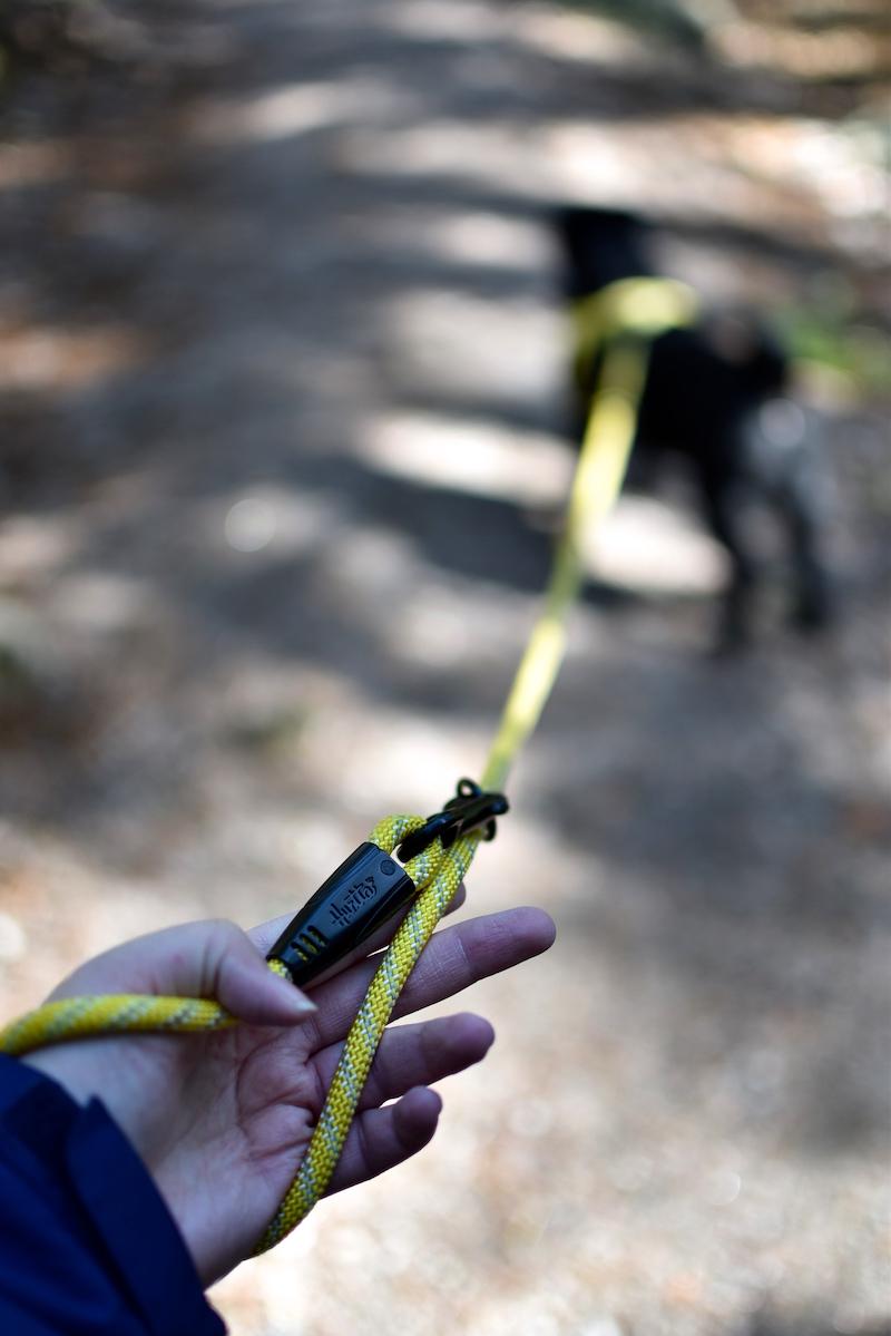 Nuuksiossa koiran kanssa DSC_0672