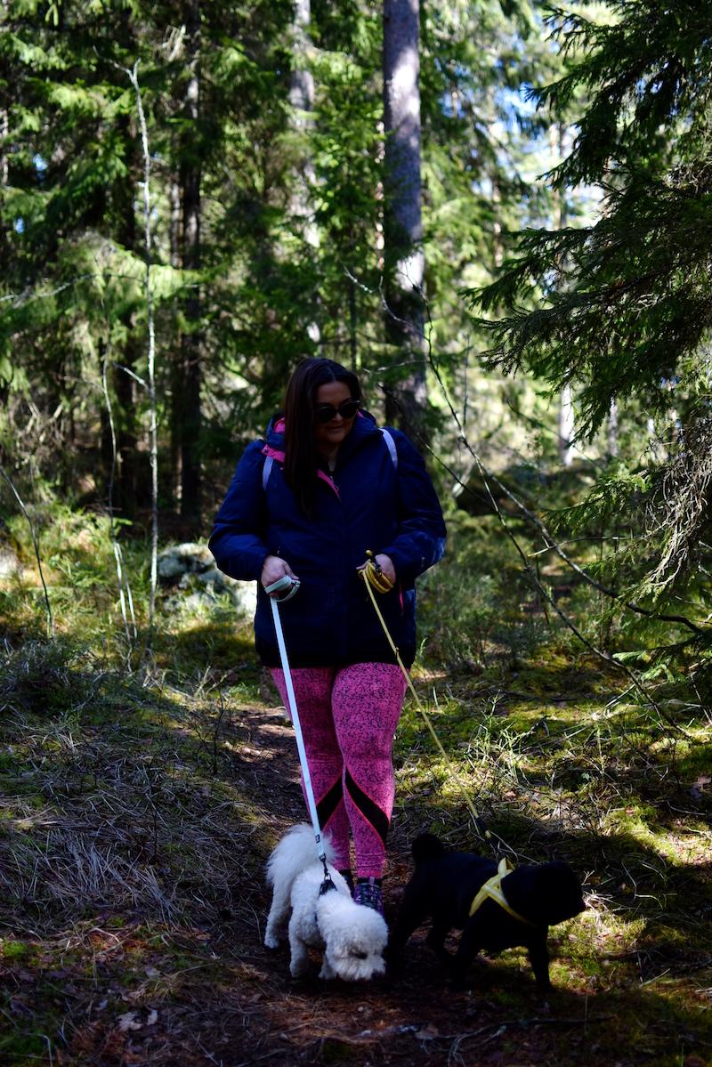 Nuuksiossa koiran kanssa DSC_0679