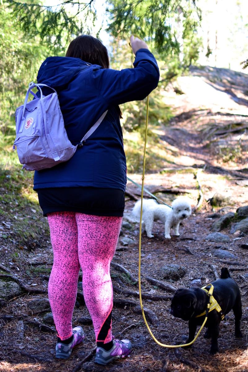 Nuuksiossa koiran kanssa DSC_0702
